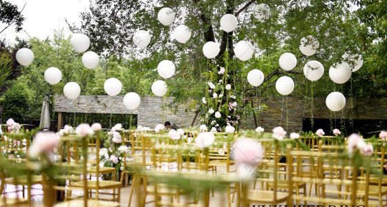 告白气球-婚礼策划图片
