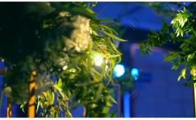 俏巴渝-婚礼图片