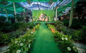 陶然居生态园林店-婚礼图片