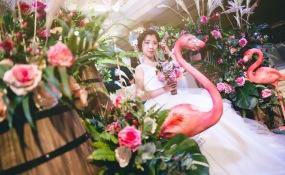 巴菲佳宴-婚礼图片