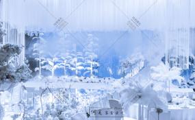 索菲特水晶厅-FROZEN婚礼图片