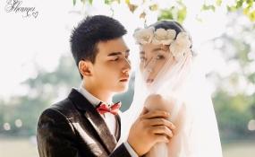 【婚纱】 案例图片