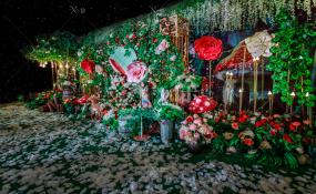 长寿豪门盛宴-柔婚礼图片