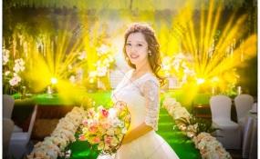 诺亚方舟-婚礼图片