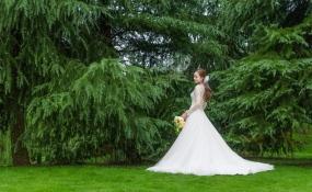 婚礼作品01 案例图片