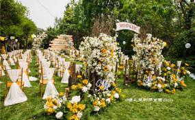 四宿天元-【花园乐聚·向日葵和满天星主题】婚礼图片