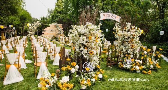 【花园乐聚·向日葵和满天星主题】-婚礼策划图片