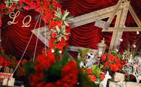 红杏明珠-婚礼图片