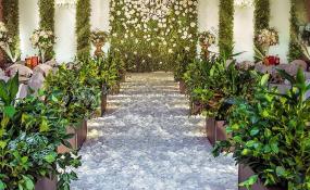 新华宾馆-一缕阳光婚礼图片