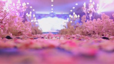 我们的故事粉色婚礼,青色婚礼,室内婚礼,小清新婚礼,西式婚礼,唯美婚礼