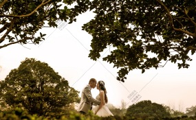 渝北区渝北雅茗苑大厅-婚礼图片