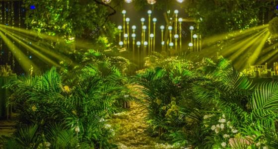 爱情森林-婚礼策划图片
