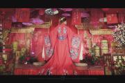 袁赵联姻-婚礼摄像图片