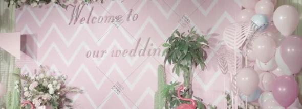 东风宴语-浅粉回忆-婚礼10s预告婚礼图片