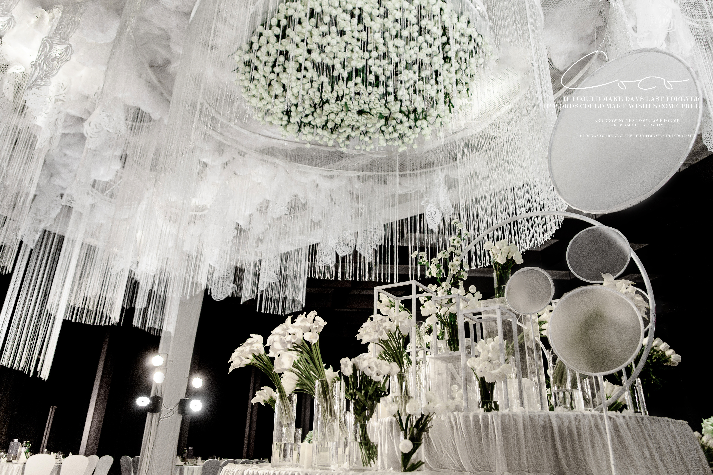 Alocasia Love III婚礼图片