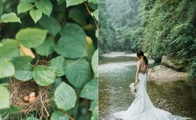 青城山-青城山前滩目的地婚礼婚礼图片