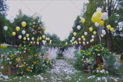 四宿天元草坪婚礼-婚礼摄像图片