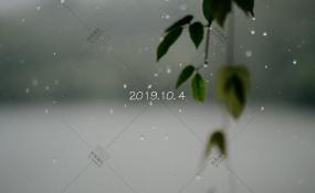 银鑫世纪酒店-11111婚礼图片
