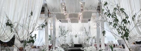 金领·莲花大酒店-回门宴婚礼图片