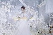 冷色调婚礼-婚礼摄像图片
