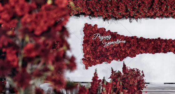 《第二次也很美》-婚礼策划图片