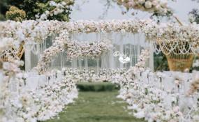 秀丽东方-【蓝樱花下花正好】婚礼图片