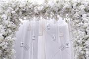 婚礼-婚礼主持图片
