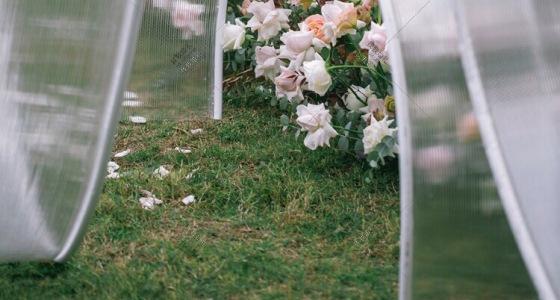 信物-婚礼策划图片