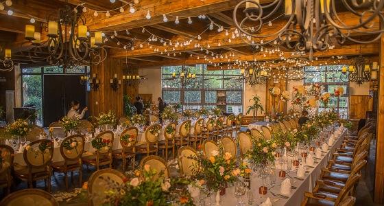 秋天的童话-婚礼策划图片
