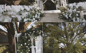 云淡风轻树下之盟 案例图片