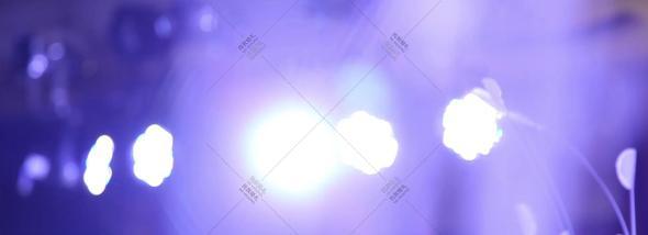四川省成都市锦江区东篱翠湖-室内案场婚礼图片