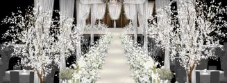 最美年华-绿室内韩式婚礼照片