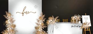 芦苇荡-黄室内简洁婚礼照片