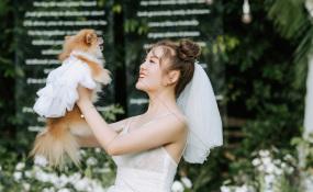 老房子·水墨红食府(欢乐谷店)-草坪婚礼,清新自然婚礼图片