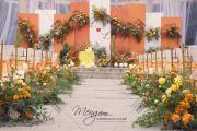 暖橘-婚礼主持图片