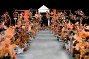 <初恋橙色系>-婚礼主持图片