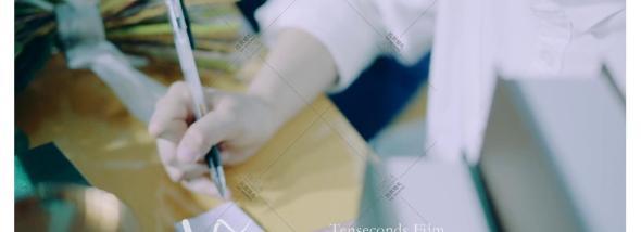 川染里-校园爱情婚礼电影婚礼图片