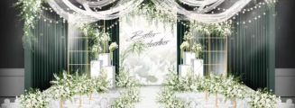 绿色小森林-绿室内森系婚礼照片