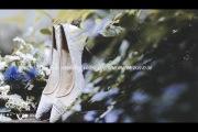 户外-婚礼摄像图片