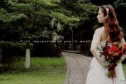只争朝夕-婚礼摄像图片