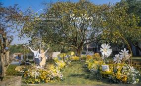 易园园林博物馆-LaLa Land婚礼图片